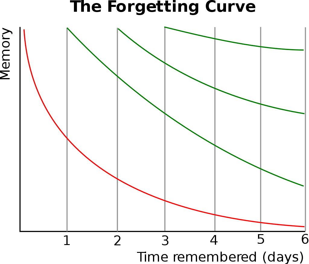 人間の忘却曲線