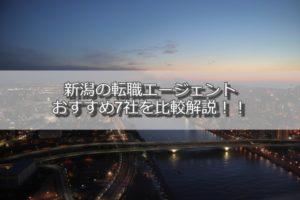 新潟の転職エージェントおすすめ6社を比較解説:失敗しない選び方