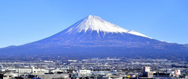 転職エージェントなら静岡で転職成功