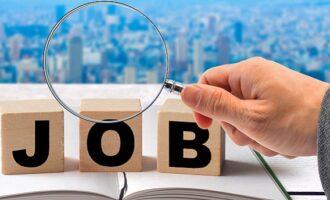 ハローワークの管轄外って何?求職活動をより効率化する活用法とは?